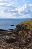 Scotland. Picturesque village to rest and sport in Scotland North Berwick with a bird island Royalty Free Stock Images