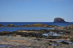 Scotland. Picturesque village to rest and sport in Scotland North Berwick with a bird island Stock Images