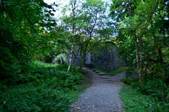 Scotland`s Dunstaffnage Chapel Ruins in the Woods. Wooded area with Dunstaffnage castle ruins Stock Image