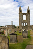Scotland, st. andrews cathedral Royalty Free Stock Photo