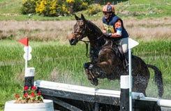 Scotsburn-Pferdeversuch Lizenzfreie Stockbilder