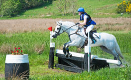 Scotsburn-Pferdeversuch Lizenzfreie Stockfotografie