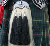 Scotsman's sporran. Close-up photograph of scotsman wearing kilt and sporran Royalty Free Stock Photo