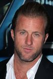 Scott Caan Royalty Free Stock Photo