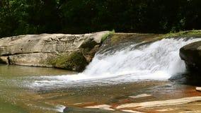 Scott Creek Falls Loop almacen de video