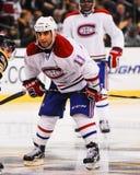 Scott Gomez Montreal Canadiens Lizenzfreie Stockfotografie