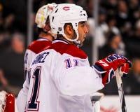 Scott Gomez Montreal Canadiens Lizenzfreies Stockfoto