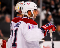 Scott Gomez Montreal Canadiens Royalty Free Stock Photo