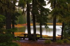 Scott Lake Camping Site längs det Santiam passerandet Arkivbilder
