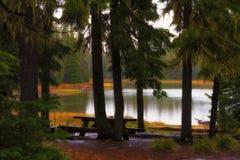 Scott Lake Camping Site langs de Santiam-Pas stock afbeeldingen