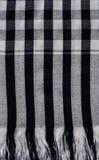 Scott scarf Royalty Free Stock Image
