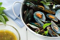 Scotti la cozza bollita con la salsa di frutti di mare piccante fotografia stock libera da diritti