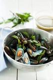 Scotti la cozza con la salsa di frutti di mare piccante fotografia stock libera da diritti
