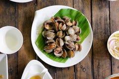 Scotti le coperture dei cuori edule dei pettini al ristorante tailandese immagini stock libere da diritti