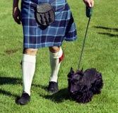 Scottie dog and kilt. A man wearing a Scottish kilt walks a Scottie dog royalty free stock images