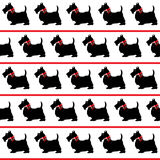 Scottie dogs seamless Royalty Free Stock Image