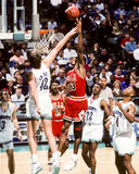 Scottie Pippen, Chicago Bulls Royalty-vrije Stock Foto's