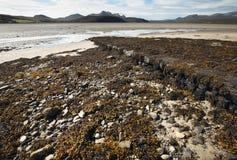 Scottish благоустраивают с морской водорослью и песком highlands Шотландия стоковая фотография