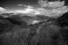 scottish горного склона Стоковая Фотография