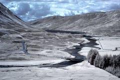 scottish ландшафта гористой местности Стоковые Изображения RF