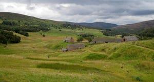 scottish ландшафта Стоковое Изображение