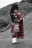 Scottish bagpiper of the highlands Stock Images