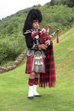 Scottish bagpiper Royalty Free Stock Photography