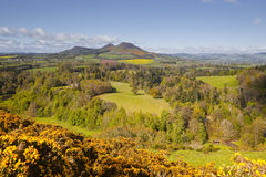 Scottish borders. Scott's view in the Scottish Borders of the United Kingdom Royalty Free Stock Images