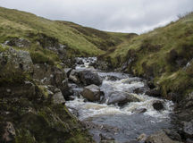 Scottish Burn. This is the burn, flowing from Loch Skeen to The Greymares Tail Stock Photo