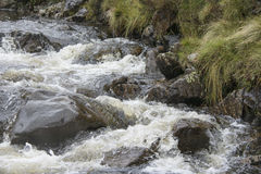 Scottish Burn. Water flowing through rocks towards The Greymares Tail, Scotland Royalty Free Stock Photography