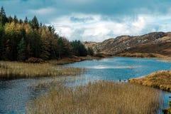 Scottish Coastal features Stock Photos