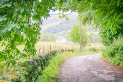 Scottish countryside Stock Images