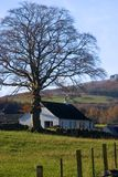 Scottish Farmhouse Stock Image
