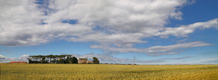 Scottish Farmland Stock Photography