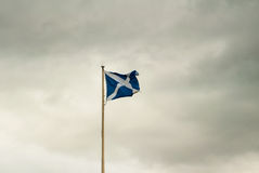 Scottish flag against overcast skies Stock Image