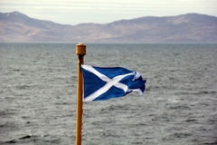 Scottish Flag Blowing In The Breeze Royalty Free Stock Photography