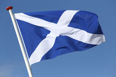 Scottish flag. Blowing in the wind stock photos