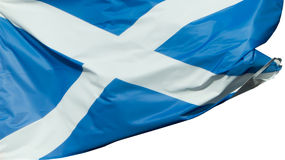Scottish flag isolated Royalty Free Stock Photos