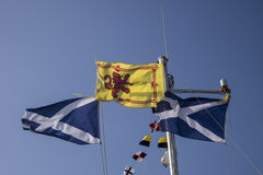 Free Scottish Flags Waving In The Wind Against Clear Blue Summer Sky Royalty Free Stock Photography - 75050267