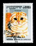 Scottish Fold Felis silvestris catus, Domestic Cats serie, circa 1997. MOSCOW, RUSSIA - NOVEMBER 24, 2017: A stamp printed in Cambodia shows Scottish Fold Felis Stock Images