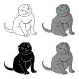 Scottish Fold icon in cartoon style isolated on white background. Cat breeds symbol stock vector illustration. Stock Photos