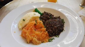 Scottish Haggis from The Elephant House Stock Images
