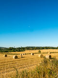 Scottish Harvest. Autumn day bringing in the harvest in Scotland Stock Photo