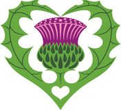 Scottish Heart & Thistle tattoo Royalty Free Stock Image