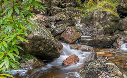 Scottish Highland Stream Stock Image