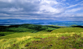 Scottish highlands. A glen in the scottish highlands royalty free stock photo