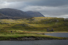 Scottish Highlands - Loch Assynt Royalty Free Stock Photos