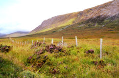Scottish Highlands. Scenic mountain landscape in the Scottish Highlands Royalty Free Stock Image