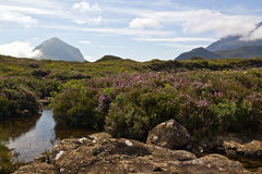Scottish Highlands Stock Image