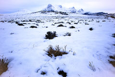Scottish Highlands in winter. Scenic view of snowy foothills of Ben Loyal in winter, Scotland Stock Photos